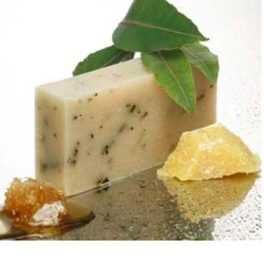 Tasmanian Wild Leaves Shampoo Bar